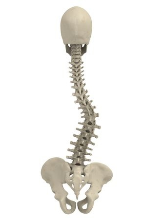 coping with scoliosis Please note that the lexile measures for a small population of books have been recently updated enhancements were made to more precisely measure materials read in k-2 classrooms.